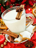 Snack for Santa. Spiced milk and homemade gingerbread cookies for Santa. Shallow dof Stock Photography