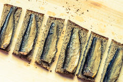 Snack with sardines on a slice of bread Royalty Free Stock Photo