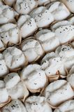 Steam buns Royalty Free Stock Images
