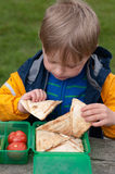 Snack time at a picnic Royalty Free Stock Images