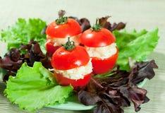 Snack in tomaten stock foto