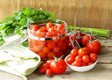 Snack tomatoes pickled with herbs Royalty Free Stock Photos