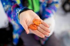 Snack in vrouwelijke handen stock afbeeldingen