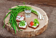 Snacks with cucumber, radish and tomato. Green onion. A glass of. Vodka. Top view. The concept of food and alcohol Stock Images