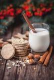 Snacks fro Santa. Close up of Santa Claus snacks stock photos
