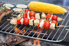 Snacks on grill Stock Image