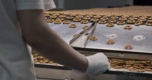 Snacks production Closeup conveyor, worker inspecting baked pretzel snacks