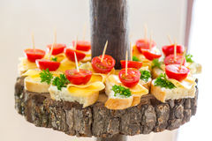 Snacks on the tree. Banquet feasts. Tomatoes and cheese. Banquet feasts. Banquet table Stock Photography