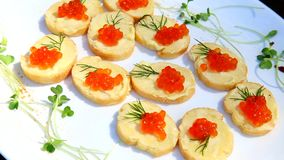 Snacks voor cocktail party catering opeenvolging stock footage