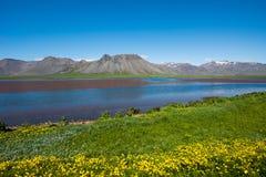 Snaefellsnes peninsula, Iceland. Landscape of Snaefellsnes peninsula, Iceland stock image