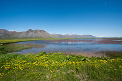 Snaefellsnes peninsula. Landscape of Snaefellsnes Peninsula, Iceland stock images