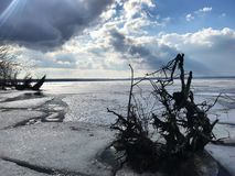 Snag on the river, protruding from the ice. The ice began to melt in the spring and split off. The sun beams through the clouds royalty free stock photos