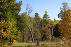 Snags near church in New Jerusalem near Istra. Moscow region, Russia Stock Image
