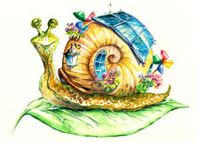 Snail. Happy snail in his eco-house.Picture  have created myself with watercolors Royalty Free Stock Image