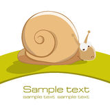 Snail. With space for text Royalty Free Stock Photo