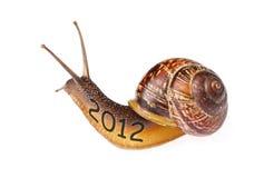 Snail 2012. Isolated on white background Stock Photos