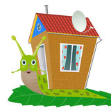 Snail. The snail with   house on its back is slithering slowly Stock Photo