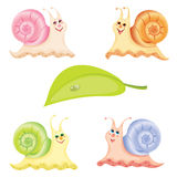 Snail. Four cheerful snails and one green sheet. Vector illustration vector illustration