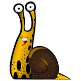 Snail. Graphic snail isolated on white background Royalty Free Stock Photo