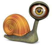 Snail (Amber Color Eye) Royalty Free Stock Photography