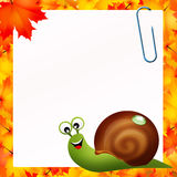 Snail in autumn Stock Photo