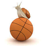 Snail and basketball (clipping path included) Royalty Free Stock Photos