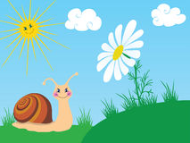 Snail with camomile Stock Photo