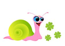 Snail cartoon with clover Royalty Free Stock Images
