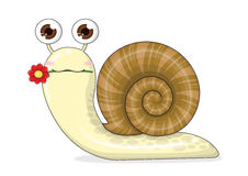 Snail cartoon cute Stock Image