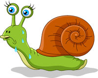 Snail cartoon Royalty Free Stock Photos