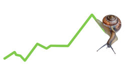 Snail on chart currency Stock Photography