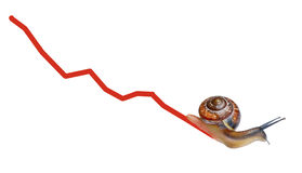 Snail on chart currency. Isolated on white background Stock Photos