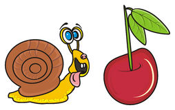 Snail and Cherries Royalty Free Stock Photography