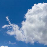 Snail cloud shape Royalty Free Stock Images