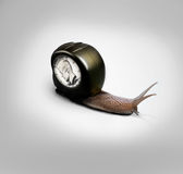 Snail with Coin and  tape concept slow business Stock Photography
