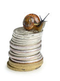 Snail on coins. Isolated on white background Stock Photo