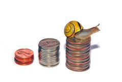 Snail on Coins Stock Photos