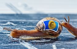 Snail with the colors of euro currency flag encouraged by another Royalty Free Stock Images