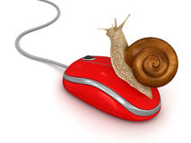 Snail and Computer Mouse (clipping path included) Royalty Free Stock Photo