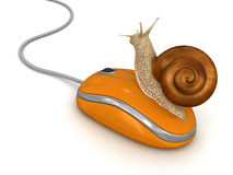Snail and Computer Mouse (clipping path included). Snail and Computer Mouse. Image with clipping path Royalty Free Stock Photo