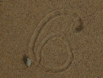 Snail crawling on the sand leaving patterns. Closeup Stock Photo