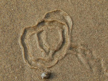 Snail crawling on the sand leaving patterns. Closeup Stock Photography
