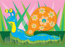 The snail creeps on a lawn. Royalty Free Stock Images
