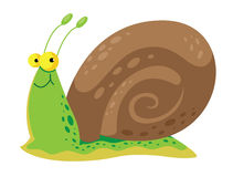 Snail cute. Illustration of a snail cute Royalty Free Stock Photography