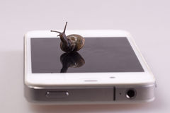Snail on the device Royalty Free Stock Images