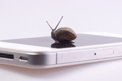 Snail on the device Stock Images