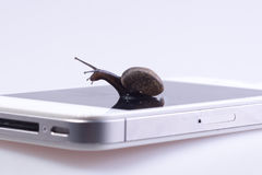Snail on the device Royalty Free Stock Photos