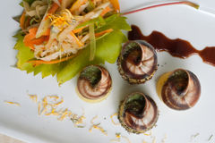 Snail dish 1 Stock Photos