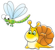 Snail and dragon-fly Royalty Free Stock Image
