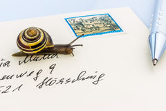 Snail on envelope Royalty Free Stock Photography